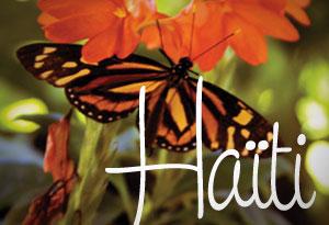 HH_Haiti
